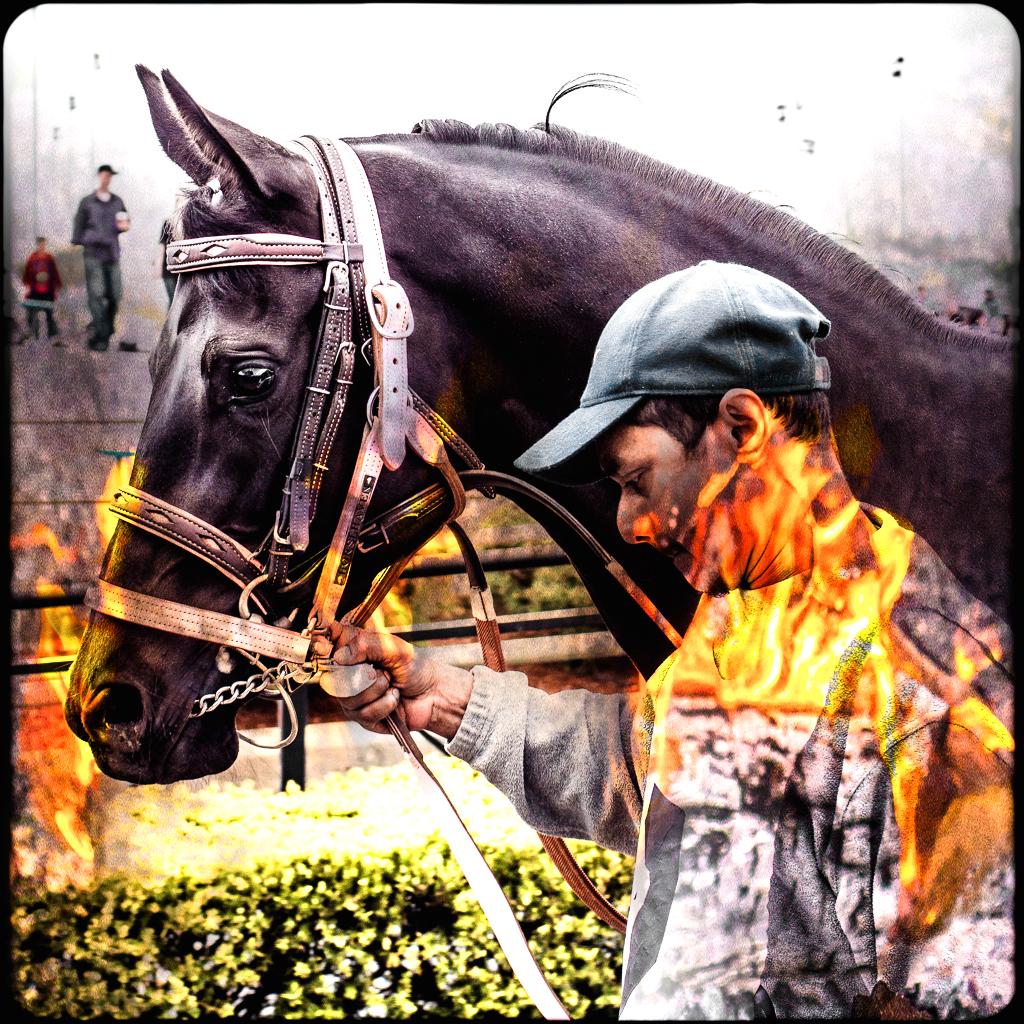 horsepocalypse 1